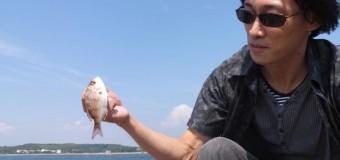 【マルハチ釣り部】愛知県佐久島で五目釣