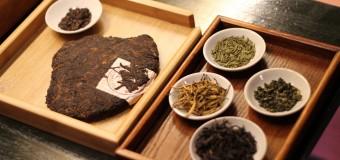 〈活動報告〉中国茶部② 中国茶について学ぼう