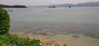 〈活動報告〉釣りを楽しもう会⑫ 砂浜の女王と出会う