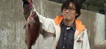 【活動報告】やっと鯛釣れました!