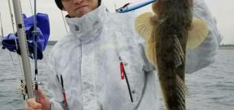 <開催終了>【🎣⑧釣り部】伊勢湾でシーバス、マゴチを釣ろう!