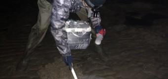 真夜中に飛び出す不思議な貝を捕獲!!