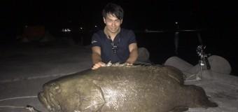釣りにゴールはあるのか?記録的な巨大魚を釣る!