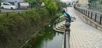 【⑧釣り部】25年を経て、やっと辿りついた 名古屋の外来種の巣窟